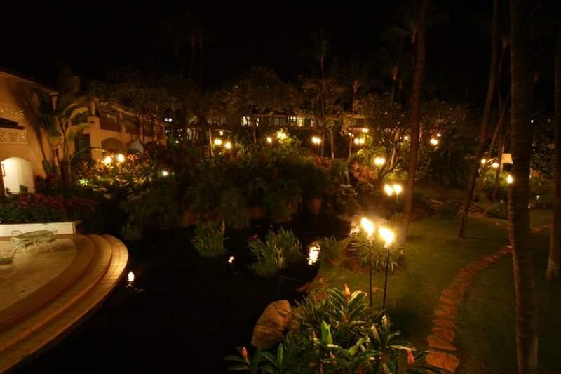 Garden In The Night Garden